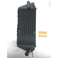 Radiatore Sinistro RM 250 1982/1983