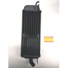 Radiatore Sinistro RM 125 1984/1985